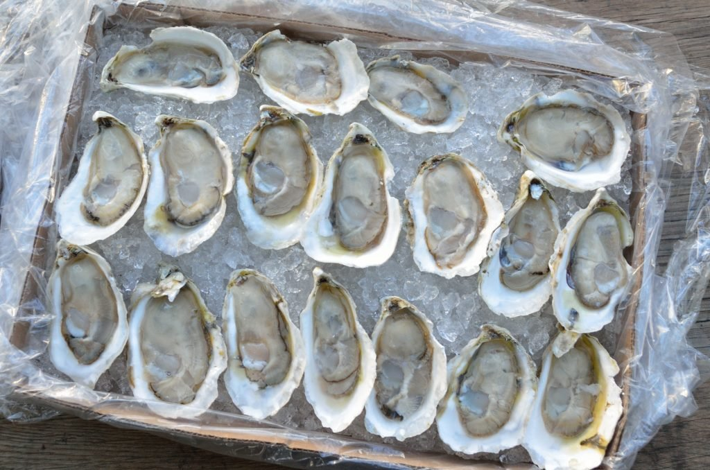 Prepare your oysters to be topped. For this, we used 2 dozen Chincoteague Oysters freshly shucked on the half shell.
